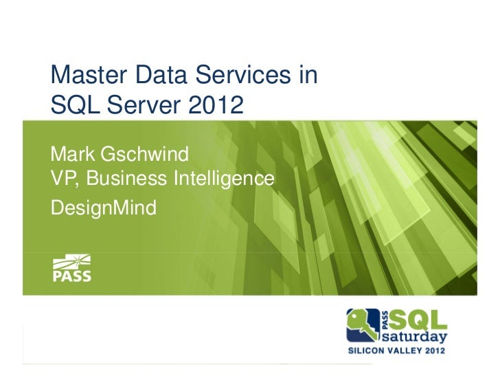 microsoft master data services review